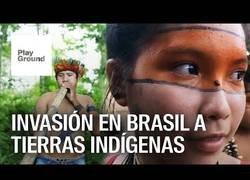 Enlace a Invasión en  tierras indígenas de Brasil