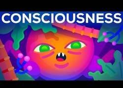Enlace a El origen de la conciencia: cómo las cosas inconscientes se hicieron conscientes