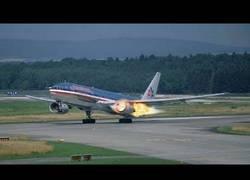 Enlace a Pájaros muriendo en el acto al impactar contra aviones en pleno vuelo