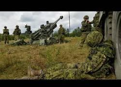 Enlace a Despertando de la mejor forma a un soldado canadiense