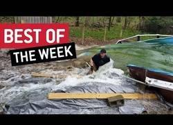 Enlace a Los mejores virales que nos ha dado la gente en la última semana