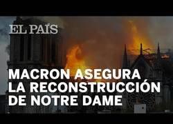 Enlace a Desgraciadamente, Notre Dame, ha ardido. Pero se podrá reconstruir