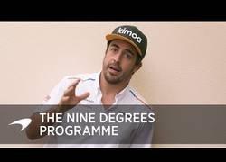Enlace a El programa de los 9 grados