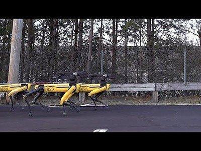 Boston Dynamics va un paso más allá y se inventa el trineo con robots