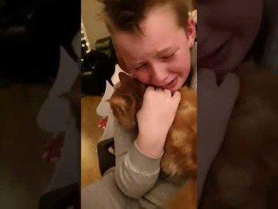 El emotivo encuentro de este niño y su gato que se perdió hace 7 meses