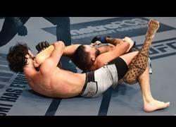 Enlace a Las sumisiones más raras vistas en combates de la MMA
