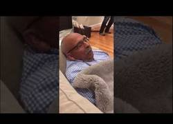 Enlace a Este hombre ronca como si se estuviese disputando un partido de tenis