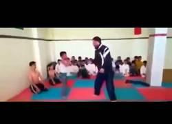 Enlace a Curioso profesor de karate