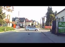 Enlace a Coche de policía protege a un erizo mientras cruza la carretera