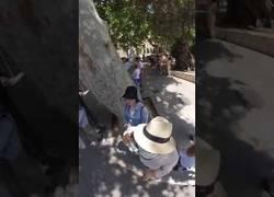 Enlace a Graban un robo a unos turistas en Mallorca con un cámara 360