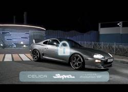 Enlace a Need For Speed en la vida real
