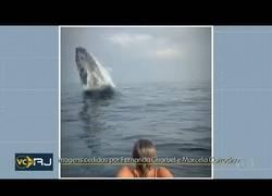 Enlace a Sorprendidos por una ballena en medio del mar