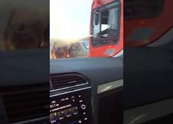 Enlace a Pelea entre conductores y uno de ellos acaba usando un extintor
