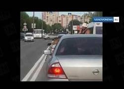 Enlace a Un tigre salta de un descapotable en plena calle en Rusia