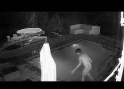 Enlace a Se dan un baño nocturno y son atacados por algo
