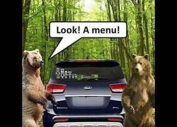 Enlace a Un oso se cuela en un coche y asusta al dueño cuando va a entrar