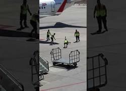 Enlace a 7 operarios vs 1 perrito en el aeropuerto