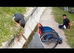 Enlace a Deportista paralímpico abandona su silla para ayudar a un gatito