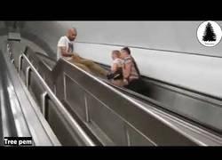 Enlace a Escaleras mecánicas, un depredador natural para el ser humano
