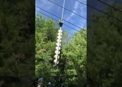 Enlace a Podar cerca de cables eléctricos