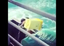 Enlace a hombre, arrojando basura en el océano