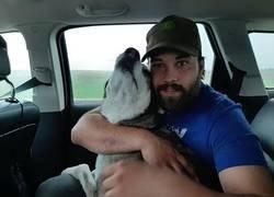 Enlace a Reencuentro entre un hombre y su perro perdido hace 4 años