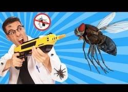 Enlace a Inventos útiles para combatir a moscas y mosquitos