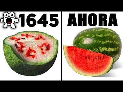 Alimentos que han evolucionado a lo largo del tiempo