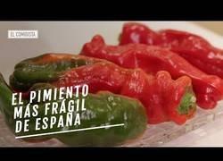Enlace a Este es el tipo de pimiento más frágil que existe en España