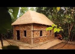 Enlace a Construyendo una caseta con maderas de la selva