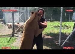 Enlace a La reacción de esta leona al reencontrarse con su antiguo cuidador