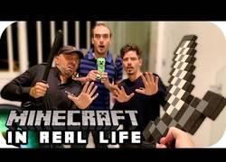 Enlace a ¿Cómo sería Minecraft en la Vida Real?