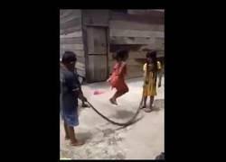 Enlace a Niños utilizan una serpiente muerte para jugar a la comba