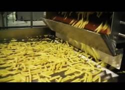 Enlace a Así se cocina patatas fritas de manera industrial
