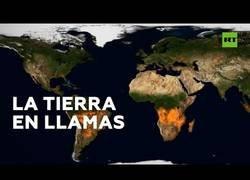 Enlace a Este vídeo nos muestra los incendios forestales que ha sufrido el planeta a lo largo del año