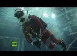 Enlace a Papá Noel da de comer a tiburones en el acuario de Río de Janeiro