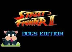 Enlace a Street Fighter II: Edición Perros
