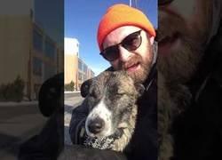 Enlace a Rescatan a un perro que se había precipitado a un río