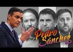Enlace a Pedro Sánchez y el Gobierno Frankenstein