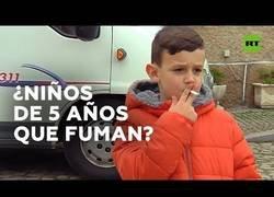 Enlace a Animan a fumar a niños en las fiestas populares de Vale de Salgueiro, Portugal