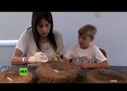 Enlace a Un niño descubre fósiles de animal prehistórico en una playa de Argentina
