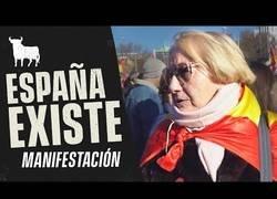 Enlace a Fortfast se cuela en la manisfestación España Existe