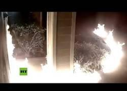 Enlace a Un pirómano incendia un complejo de apartamentos en California