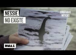 Enlace a Investigadores desmontan las teorías sobre el monstruo del lago Ness