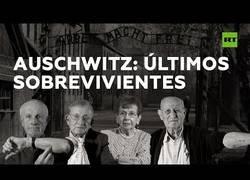 Enlace a Los últimos supervivientes de Auschwitz hablan 75 años después