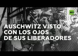 Enlace a Los liberadores de Auschwitz cuentan su historia en el 75º aniversario de la efeméride