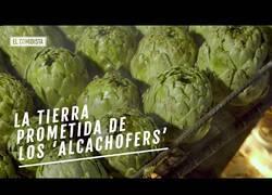 Enlace a Benicarló, la tierra prometida de los fans de la alcachofa