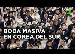 Enlace a Miles de parejas se casan en una boda colectiva en Corea del Sur
