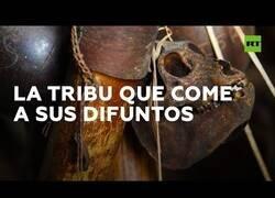 Enlace a Los yanomamis, la tribu que se come a sus difuntos