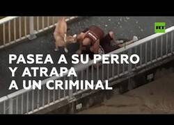 Enlace a Un hombre que paseaba a su perro ayuda a la Policía a atrapar a un delincuente